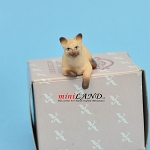 "Laying Cat Siamese 1""H/1⅛""L/¾""W For dollhouse miniatures 1:12 scale"