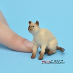 "Cat Siamese 1""H/1¼""L/1""W For dollhouse miniatures 1:12 scale"