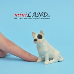 Bull Terrier-Sitting Dog for Dollhouse miniature 1:12 scale
