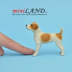 Large Jack Russell Terrier Dog for Dollhouse miniature 1:12 scale