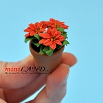 Poinsettia in pot  for dollhouse miniature 1:12 scale
