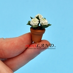 Hydrangea Blue Sm  in pot  for dollhouse miniature 1:12 scale