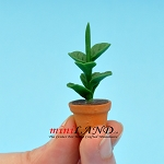 House Plant in pot for dollhouse miniature 1:12 scale