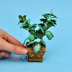Dieffenbachia squre Urn for dollhouse miniature 1:12 scale