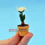 Lily In Pot -white for dollhouse miniature 1:12 scale