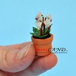 Cyclamen white in pot for dollhouse miniature 1:12 scale