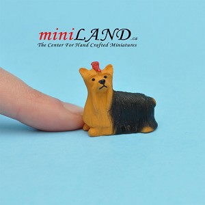 Terrier Small Yorkshire dog for Dollhouse miniature 1:12 scale