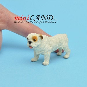 Standing Bulldog dog for Dollhouse miniature 1:12 scale
