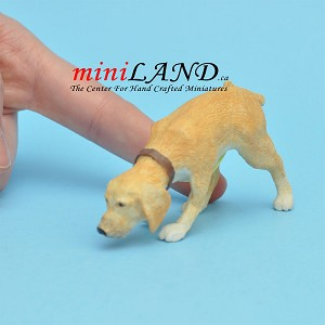 Sniffing, golden brown for Dollhouse miniature 1:12 scale