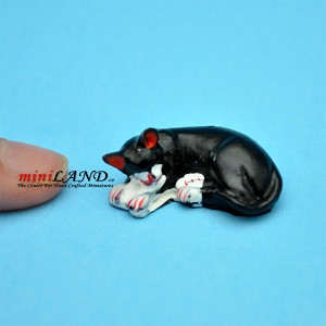Economic black sleeping cat dollhouse miniature 1:12 scale